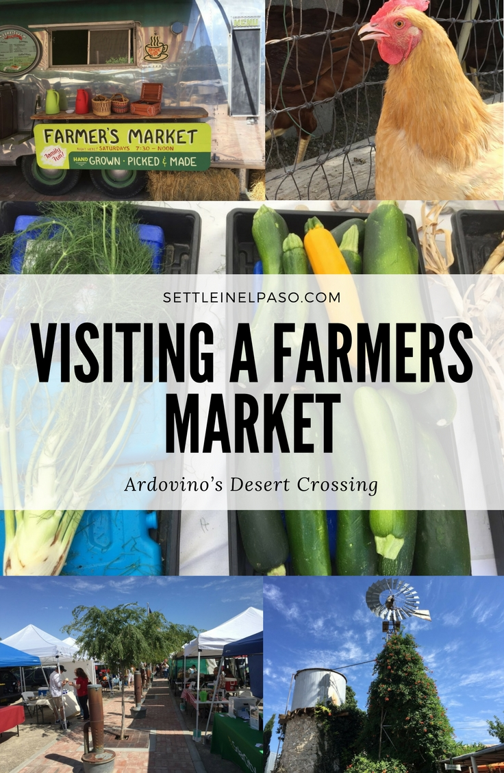 Ardovino's Desert Crossing Farmers Market is near El Paso. #ElPaso #Travel #Family #FamilyActivity #ForKids #ForFamily