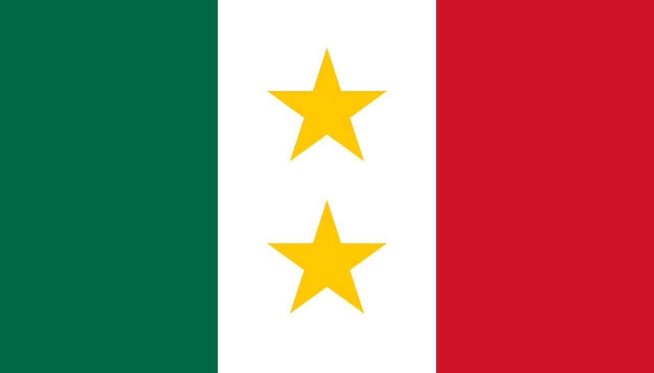 The flag of Coahuila y Tejas had two stars.