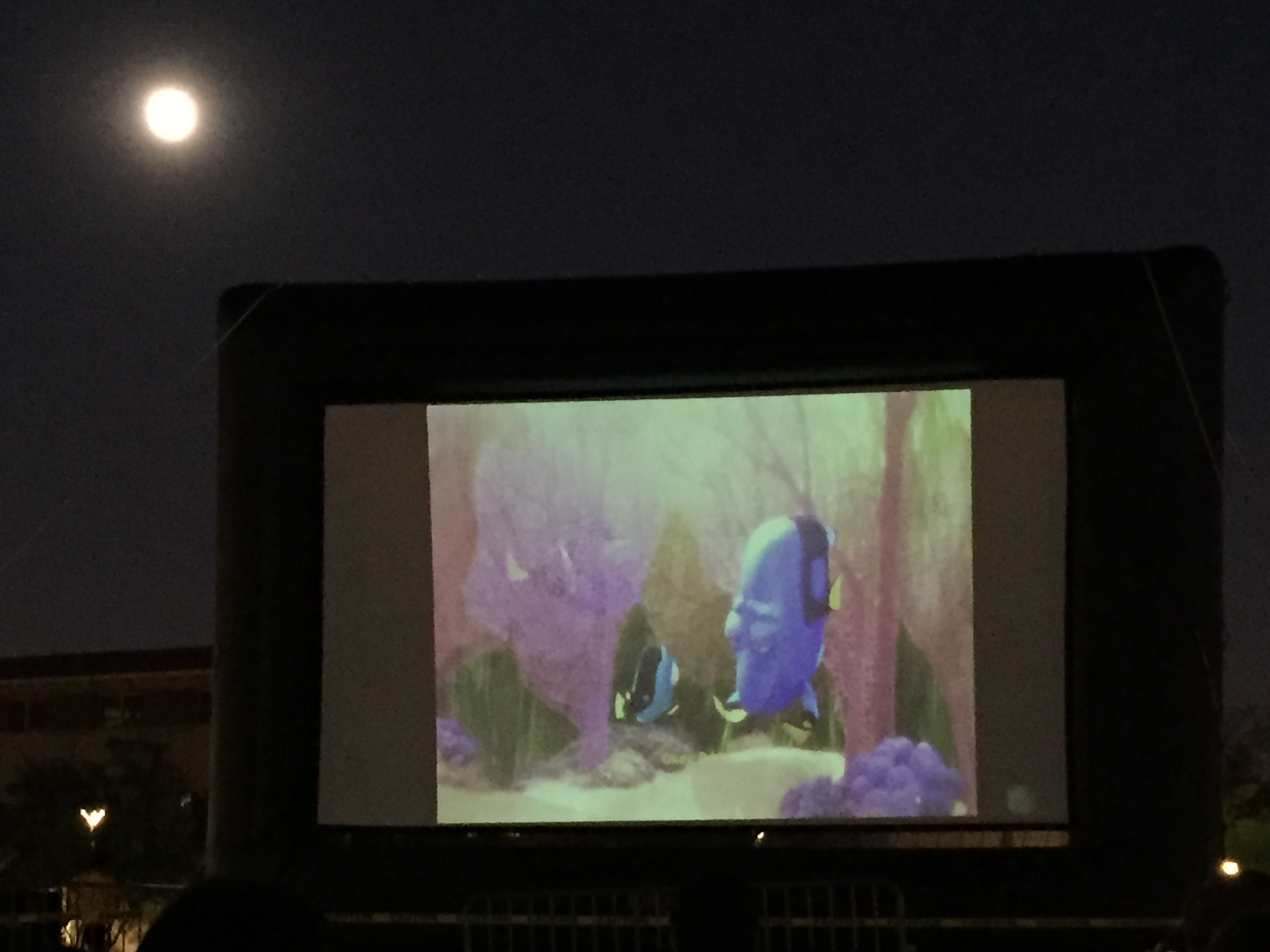 We started watching Finding Dory under the moon. :-)