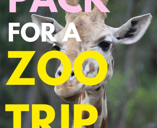 What to pack for a zoo trip with a toddler? A zoo trip with children cannot be sudden. It needs some preparation. #parenting #children #summerfun #travel #familyfun #family