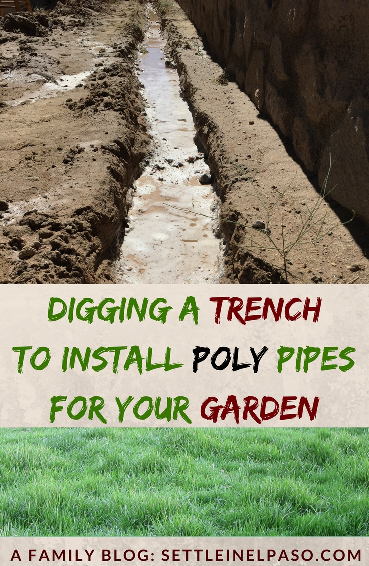 Digging a trench in the backyard for sprinklers can be a daunting task if the soil is rocky and if you do not own or rent a trencher. If you are in a place where the soil is a bit sandy, you will be able able to use this technique to trench, which does not involve a trencher. #gardening #sprinkler #diy