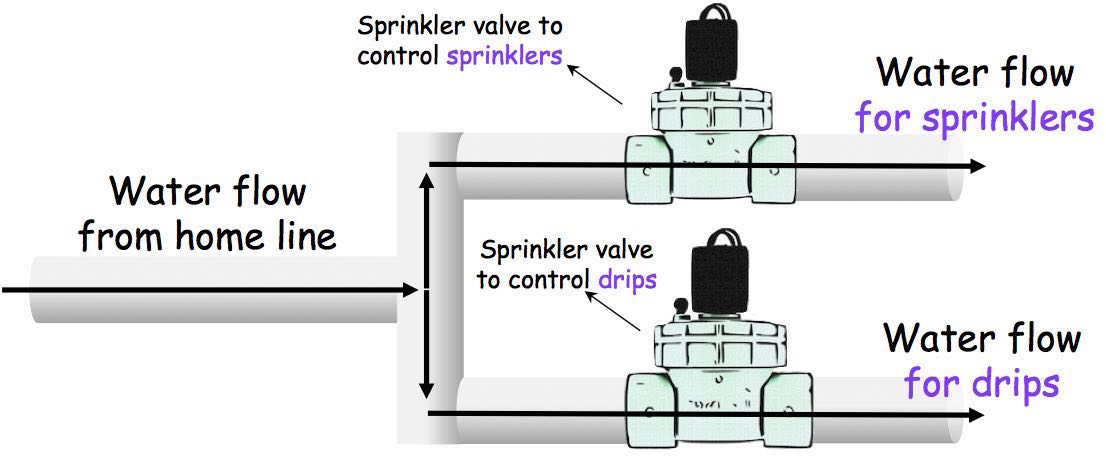 Separate sprinkler valves for drips and sprinklers