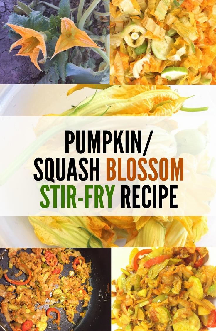 Pumpkin/squash blossom recipe (stir-fry). A delicious seasonal savory delicacy.