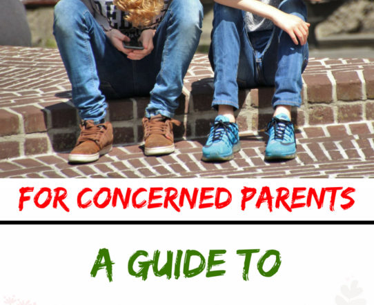Preventing cyberbullying is the best way to protect your child. The post describes a guide on how to safeguard children against cyberbullying. #cyberbullying #parenting #children