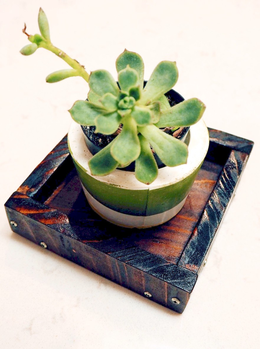Wooden tray and a succulent planter. #woodworking #diy