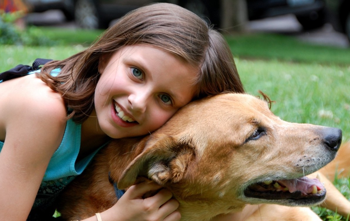 A dog can become children's  best friend in the family.